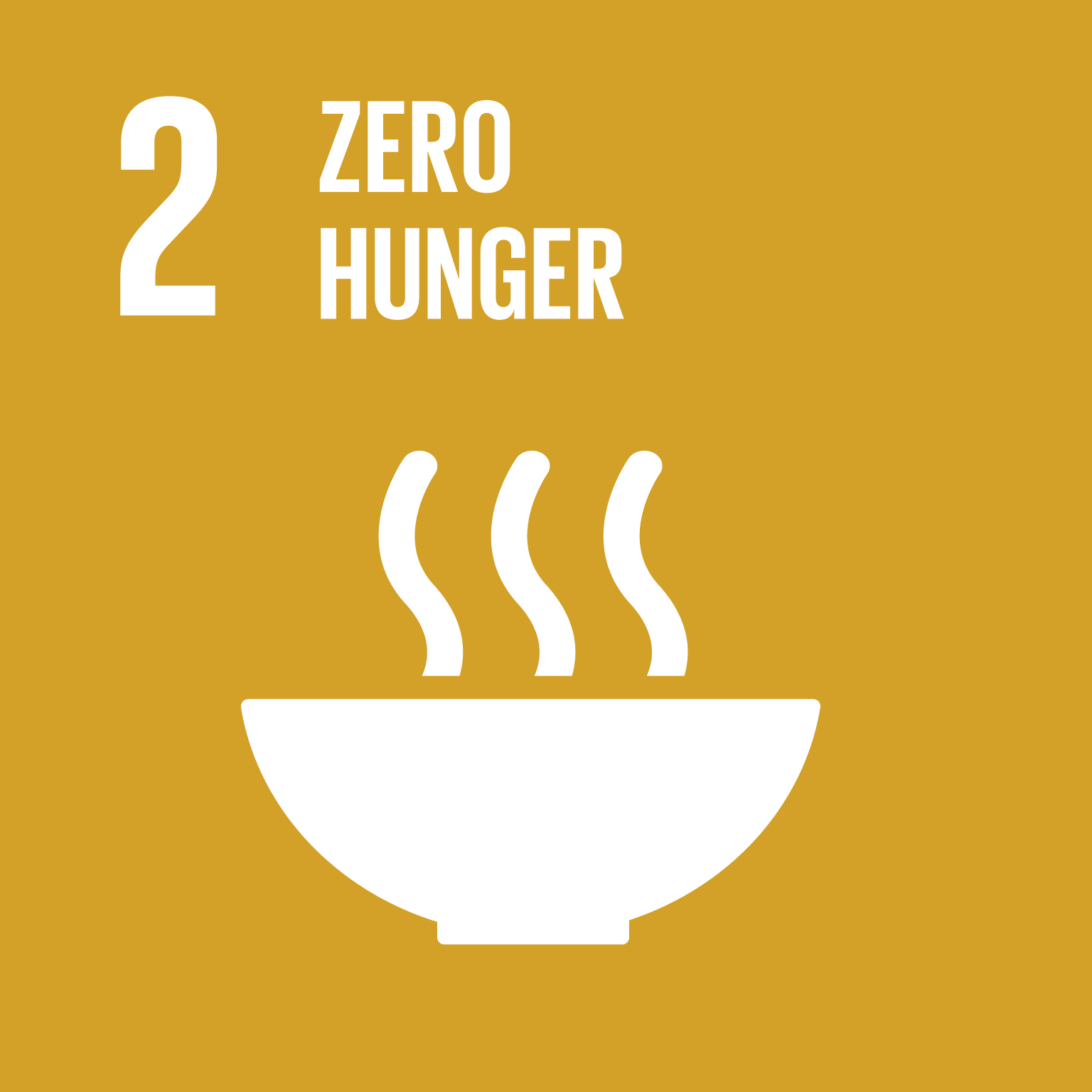Y4SD Session 1: Sustainable Food Production and Food Security from the Gender Lens (SDG2)