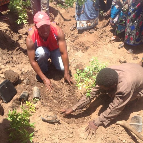 MASTERPEACE MALAWI PLANTING THE SEEDS OF PEACE cover